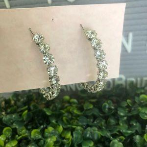 Silver and Rhinestone Hoop Style Earrings